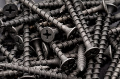 Macro of dark grey drywall screws Royalty Free Stock Photography