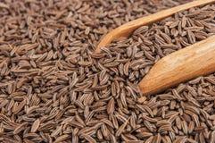 Macro das sementes de cominhos e colher de madeira imagem de stock