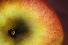 Macro de Apple Fotos de archivo