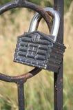 Macro de cadenas - la défense de maison Photos libres de droits