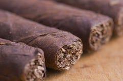 Macro de cigarros cubanos Imágenes de archivo libres de regalías