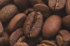 Macro de Cofee Imagen de archivo libre de regalías