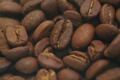 Macro de Cofee Imagenes de archivo