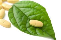 Macro de comprimidos da prescrição sobre a folha verde Imagem de Stock Royalty Free