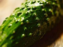 Macro de concombre Image stock