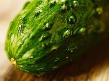 Macro de concombre Photographie stock libre de droits