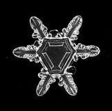 Macro de cristal natural do floco de neve foto de stock