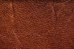 Macro de cuero de la textura Fotos de archivo libres de regalías