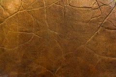Macro de cuero de la textura Imagenes de archivo
