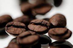Macro de feijões do café Imagem de Stock Royalty Free