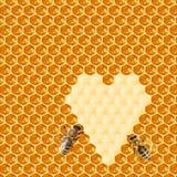 Macro de la abeja de trabajo en honeycells Foto de archivo libre de regalías