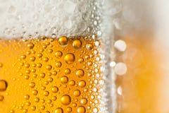 Macro de la cerveza de restauración Fotografía de archivo libre de regalías