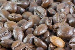 Macro de los granos de café Fotos de archivo libres de regalías