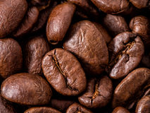 Macro de los granos de café Imagen de archivo libre de regalías