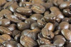 Macro de los granos de café II Imagen de archivo libre de regalías