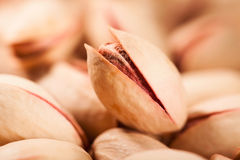 Macro de pistache Image stock