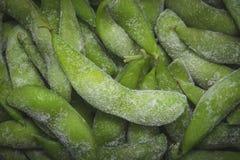 Macro de plan rapproché de soja vert Image libre de droits