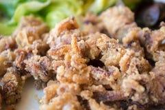 Macro de plat andalou d'Espagnol de calamari Images stock