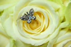Macro de Rosa com borboleta Imagem de Stock