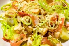 Macro de uma salada de frango em um prato de porcelana branco foto de stock royalty free
