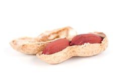 Macro de un cacahuete abierto aislado en blanco Imagen de archivo