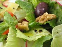 Macro de una ensalada sana Imagen de archivo