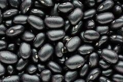 Macro de vue supérieure des haricots noirs Concep sain et de nutrition de nourriture Photo libre de droits