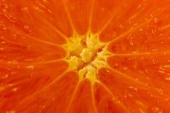 Macro degli agrumi Contesto confuso con un mezzo mandarino fotografie stock libere da diritti