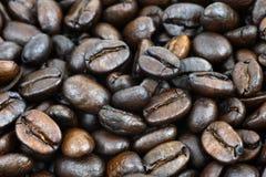 Macro dei chicchi di caffè Fotografie Stock