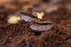 Macro dei chicchi di caffè con il mucchio arrostito del caffè Fotografia Stock