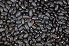 Macro dei fagioli neri asciutti Fotografie Stock Libere da Diritti
