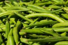 Macro dei fagiolini freschi del mazzo al mercato locale dell'alimento Fotografie Stock