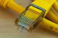 Macro del cavo di Ethernet fotografia stock libera da diritti