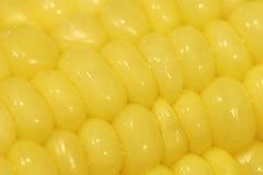 Macro del cereale Fotografia Stock