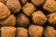 Macro del cibo per cani Fotografie Stock