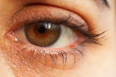 Macro del detalle del ojo Foto de archivo