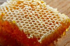 Macro del detalle del panal de la miel Foto de archivo