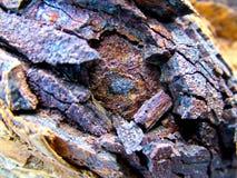 Macro del ferro Fotografia Stock