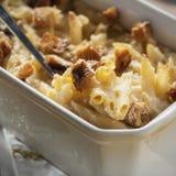Macro del formaggio e del mackintosh Fotografia Stock