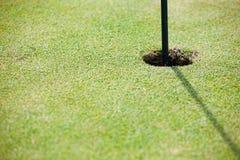 Macro del golf Foto de archivo libre de regalías