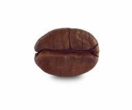 Macro del grano de café Fotos de archivo