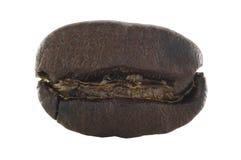 Macro del grano de café con el camino de recortes Imagen de archivo
