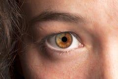 Macro del ojo Imagenes de archivo