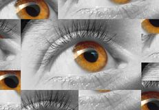 Macro del ojo Imagen de archivo