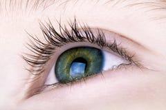 Macro del ojo de los muchachos Fotos de archivo libres de regalías