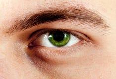 Macro del ojo del hombre verde Fotos de archivo