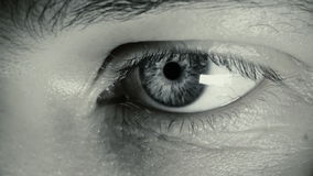 Macro del ojo, hombre joven Fotografía de archivo libre de regalías