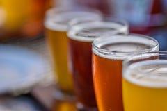 Macro del primer de un vuelo de la cerveza en luz del sol foto de archivo