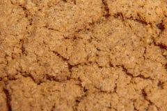 Macro del primo piano dei biscotti di farina d'avena Fotografia Stock Libera da Diritti
