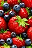 Macro del primo piano della fragola rossa matura saporita con Berri blu fresco Immagini Stock